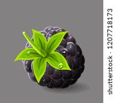 blackberry with a stem and... | Shutterstock .eps vector #1207718173