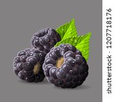 blackberries with a leaves and... | Shutterstock .eps vector #1207718176