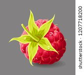 raspberry with a stem and drops ... | Shutterstock .eps vector #1207718200