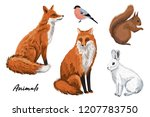 cute red fox  white rabbit ... | Shutterstock .eps vector #1207783750