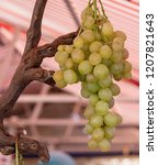 close up of grapes at a market... | Shutterstock . vector #1207821643