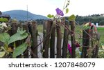 view of the mountains and the... | Shutterstock . vector #1207848079