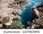 clean blue water of dahab  egypt | Shutterstock . vector #1207865890