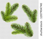 fir tree isolated isolated... | Shutterstock . vector #1207904740