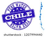 map of chile vector mosaic and... | Shutterstock .eps vector #1207994440