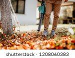 horticulture close up details... | Shutterstock . vector #1208060383