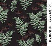 fern frond herbs  tropical... | Shutterstock .eps vector #1208138479