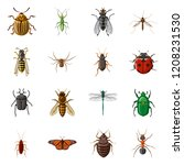isolated object of insect and... | Shutterstock .eps vector #1208231530
