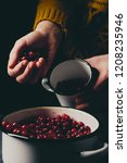 female hands pouring ripe... | Shutterstock . vector #1208235946
