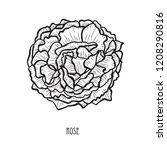 decorative rose flower  design... | Shutterstock .eps vector #1208290816