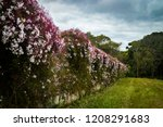 lush landscape of the south of... | Shutterstock . vector #1208291683