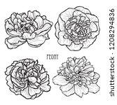 decorative peony  flowers set ... | Shutterstock .eps vector #1208294836