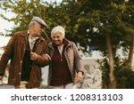 portrait of senior couple...   Shutterstock . vector #1208313103