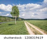 a tree on the bank of the river ... | Shutterstock . vector #1208319619