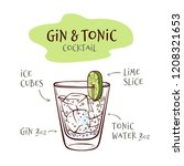 Vector Illustration Of Gin And...