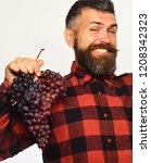 farmer shows his harvest....   Shutterstock . vector #1208342323