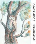 The Owl Sleeping On The Branch. ...