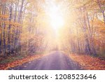 the road in the middle of a... | Shutterstock . vector #1208523646