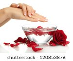 woman hands with glass bowl of... | Shutterstock . vector #120853876