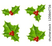 set of christmas holly icons | Shutterstock .eps vector #120864736