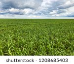 pasture field in a cloudy day.   Shutterstock . vector #1208685403