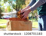 man gathering autumn leaves | Shutterstock . vector #1208701183