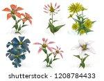 2d illustration. decorative...   Shutterstock . vector #1208784433