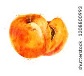 apricot on white background.... | Shutterstock . vector #1208800993