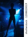 silhouette of a go go dancer... | Shutterstock . vector #1208820019