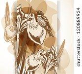 beautiful background with iris...   Shutterstock .eps vector #120889924