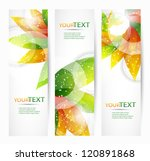 abstract vector eps10 headers... | Shutterstock .eps vector #120891868