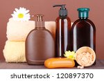 set for care of a body on brown ... | Shutterstock . vector #120897370