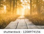 colorful sunrise at swamp... | Shutterstock . vector #1208974156