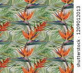 hand drawn watercolor tropical... | Shutterstock . vector #1209012013