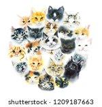 domestic cat. cats background.... | Shutterstock . vector #1209187663
