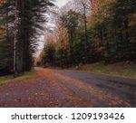 remote road in the adirondack... | Shutterstock . vector #1209193426