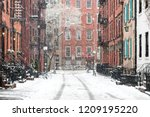 snowy winter scene on gay... | Shutterstock . vector #1209195220