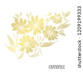 decorative chamomile flowers ...   Shutterstock .eps vector #1209199333