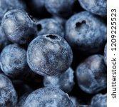 summer blueberries background... | Shutterstock . vector #1209225523