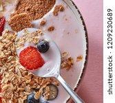 dietary homemade natural... | Shutterstock . vector #1209230689