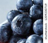 fresh sweet blueberry close up  ... | Shutterstock . vector #1209230719