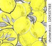 ink sketch lemons. seamless... | Shutterstock . vector #1209237583