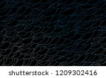 light blue vector  pattern with ... | Shutterstock .eps vector #1209302416