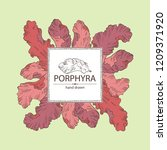 background with porphyra ... | Shutterstock .eps vector #1209371920