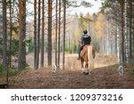 woman horseback riding in forest | Shutterstock . vector #1209373216