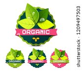 organic labels with leaves... | Shutterstock .eps vector #1209497503