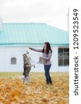 Stock photo girl plays with her husky dog in fallen autumn leaves 1209523549