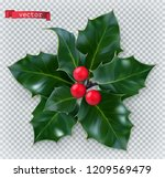 holly traditional christmas... | Shutterstock .eps vector #1209569479