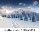beautiful winter landscape in... | Shutterstock . vector #120960814