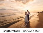 a beautiful couple of newlyweds ... | Shutterstock . vector #1209616450